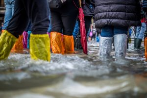 Flood image of legs in waders and water